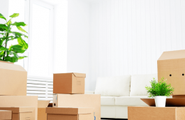Moving boxes stacked in a dwelling